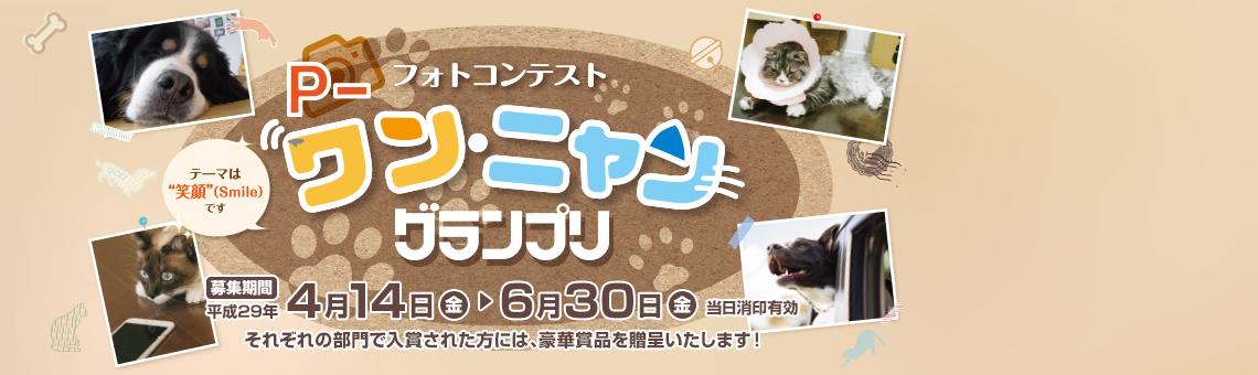【創立140周年】フォトコンテスト「P-ワン・ニャン グランプリ」開催中!
