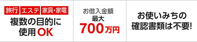 旅行 エステ 家具・家電 複数の目的に使用OK お借入金額最大700万円 お使いみちの確認書類は不要!